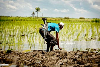 Moro rebel farmer Getty Images photo